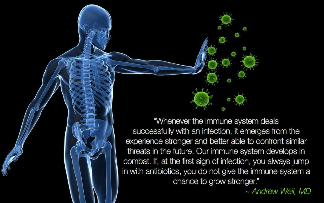 Boost Your Immune System And Prevent Antibiotic Use